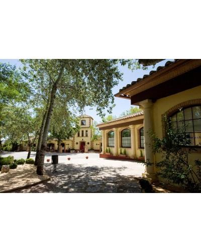 Descansa en el balneario de Cervantes